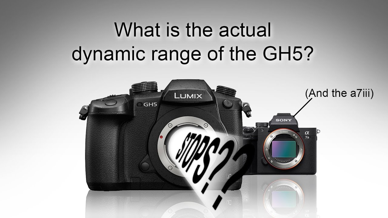 תחום דינמי זמין ב-GH5 והשוואה ל-a7 III