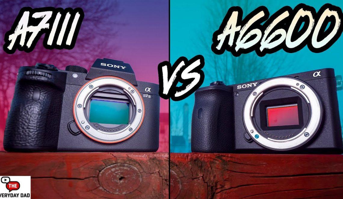 השוואה בין Alpha a6600ל- Alpha a7 III