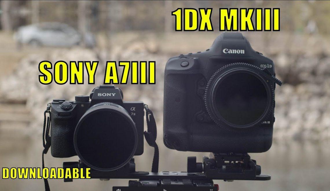 השוואה בין 1Dx Mark III ל-A7 III